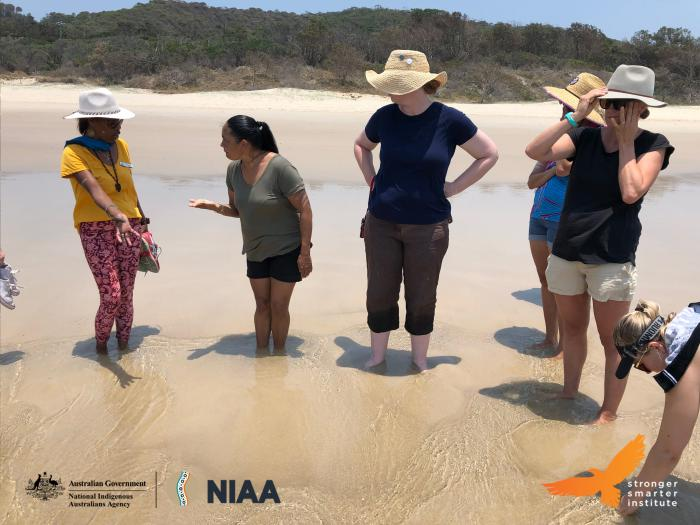 Six women stand in the shoreline at the beach. They are talking and pointing at objects in the water.
