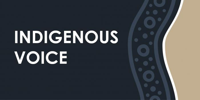 Words 'Indigenous Voice' appear on a dark grey background with wavy blue, black and white lines with dots and circles at right and beige colour at far right.