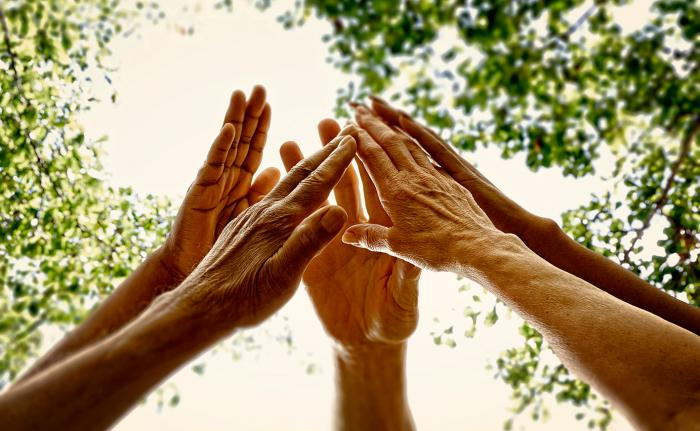 Group of hands reach upward forming a circle. There are tree branches in the background and a white sky.