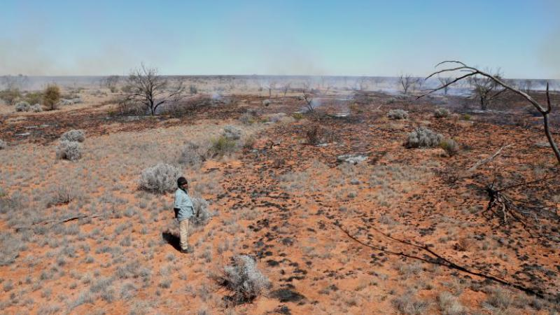 A man with black hair wearing a blue shirt and brown pants stands in the desert. Around him is dry bushes, red dirt and there is a tree with no leaves in the left hand corner.