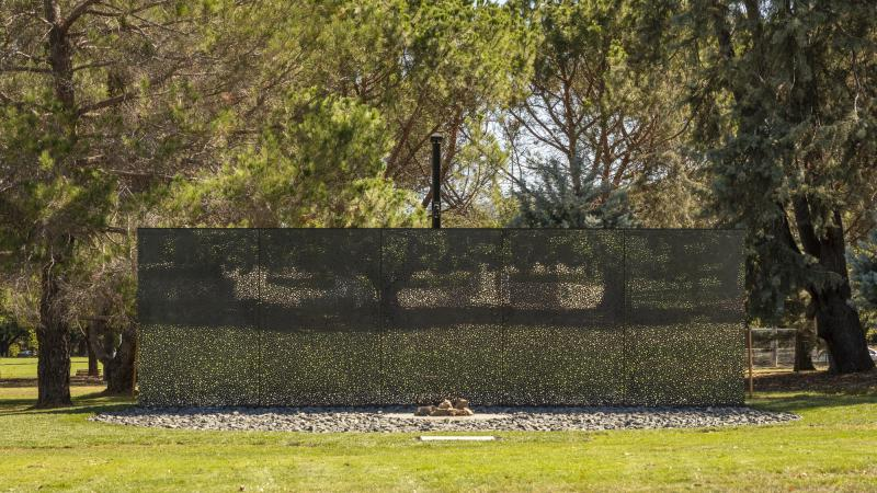 Shiny wall with reflection of trees. In the foreground, grass, rocks and a fireplace. In the background are many trees.