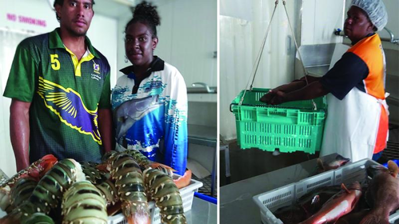 Two images. At left: A young adult man and young adult woman stand side by side. Before them is a tray of lobsters. At right: A middle aged woman places a fish on a scale. Before here is a tray of fish and behind her is a large fridge.