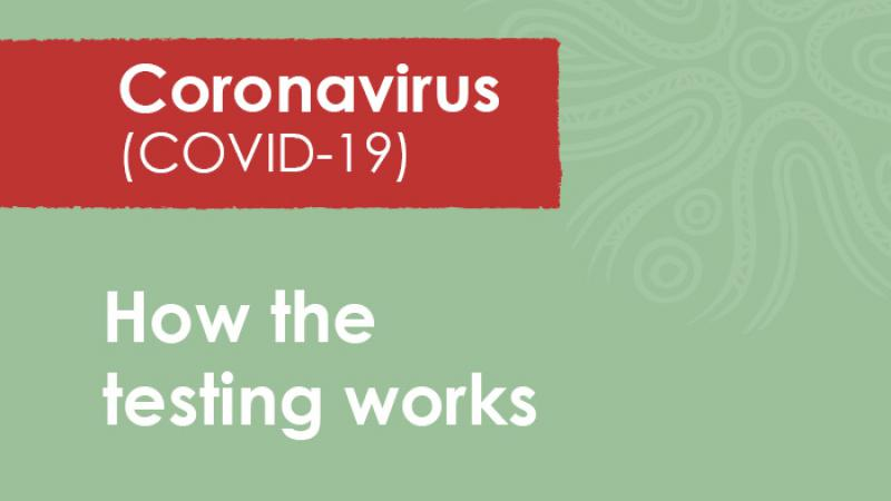 Green tile with a red insert with the words: Coronavirus Covid-19. Below the insert are the words: How the testing works