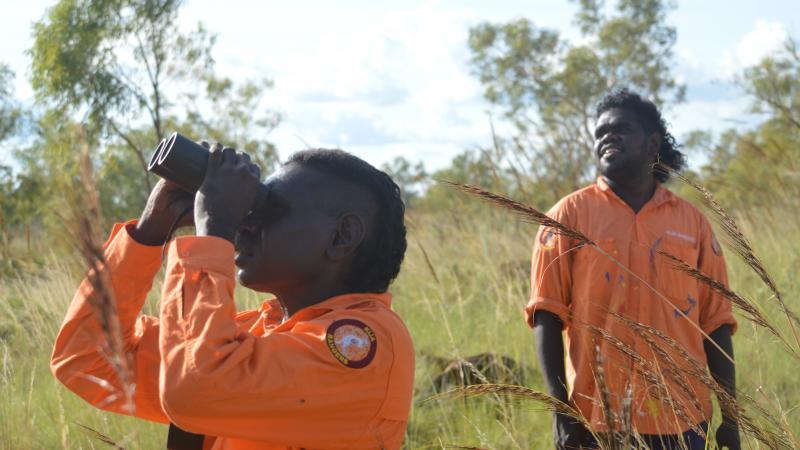 Kija Rangers Imran Paddy and Andrew Mung on Gouldian finch survey