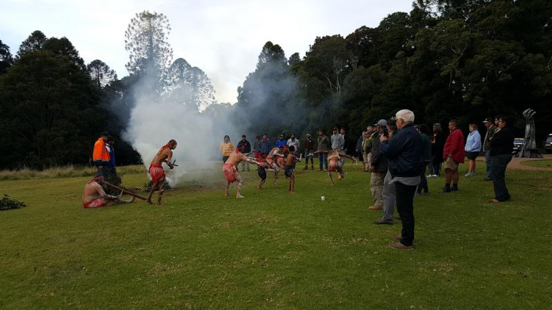 Indigenous dancers in full traditional dress perform next to a fire on a grassed area in front of onlookers. In the background are tall trees.