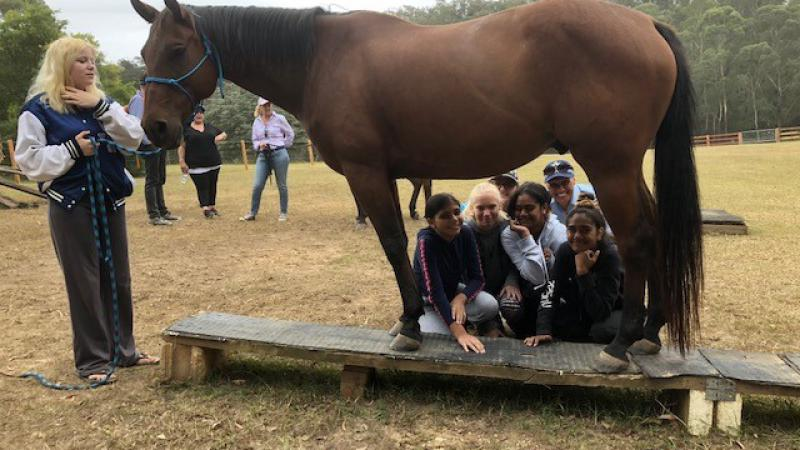 Young girls and two police officers squat behind a horse but are seen through the gap between the front and rear legs. At the head of the horse is a young woman holding its reins. In the background are more people, a grassy area and trees.