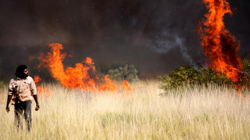 World Indigenous Network photo competition finalist - Jigalong Rangers out burning country to bring it back to life. Photo: Tim Schneider.